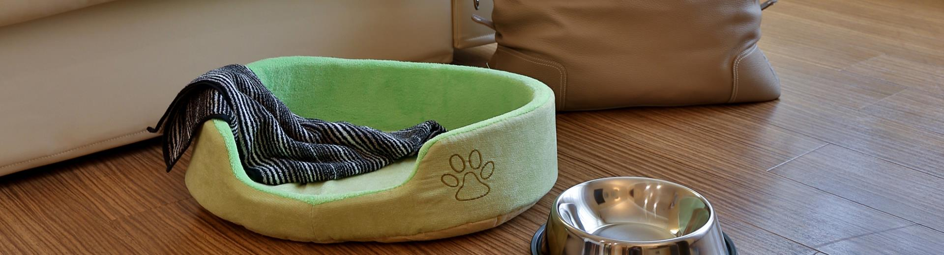 If you travel with your pet the BW Hotel Biri in Padua offer special services for you and you pet: pets are Welcome!