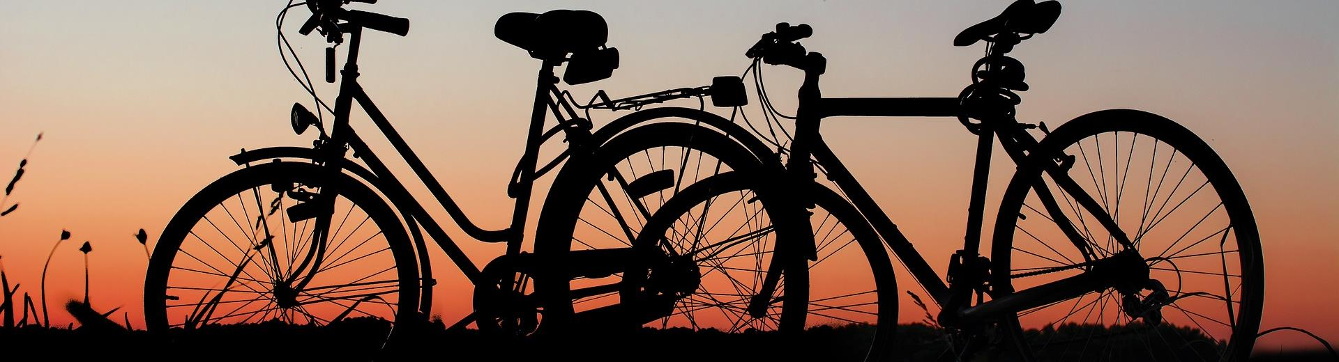 Best Western Hotel Biri, Padova 4 star, has a convenient city bike rental: find out all the most interesting itineraries in the area!